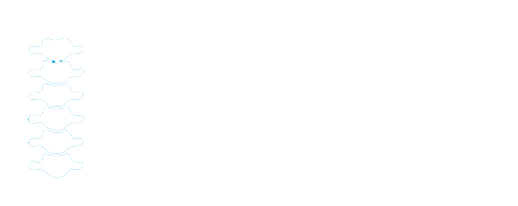 The Chiropractic Store